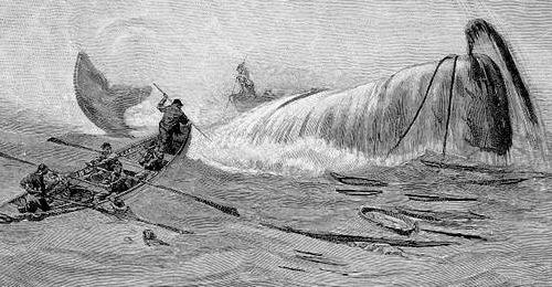 whaling scene